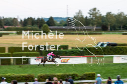 2018_08_21 Dielsdorf 325 - Michèle Forster Photography