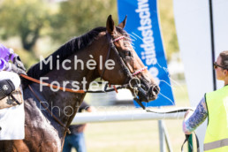 2018_10_07 Maienfeld 055 - Michèle Forster Photography
