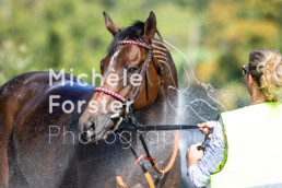 2018_10_07 Maienfeld 059 - Michèle Forster Photography
