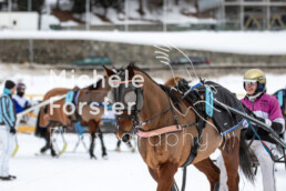 2019_02_10 St. Moritz 012 - Michèle Forster Photography