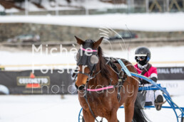 2019_02_10 St. Moritz 022 - Michèle Forster Photography
