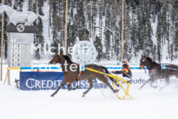 2019_02_10 St. Moritz 045 - Michèle Forster Photography