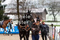 2019_04_14 Fehraltorf001 - Michèle Forster Photography