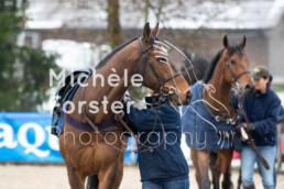 2019_04_14 Fehraltorf004 - Michèle Forster Photography
