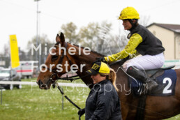 2019_04_14 Fehraltorf045 - Michèle Forster Photography