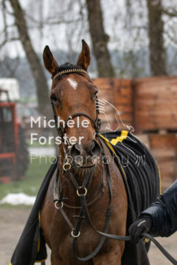 2019_04_14 Fehraltorf056 - Michèle Forster Photography