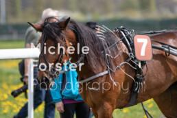2019_04_22 Fehraltorf 036 - Michèle Forster Photography