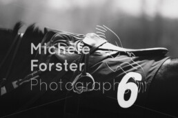 2019_04_22 Fehraltorf 054 - Michèle Forster Photography