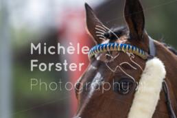 2019_04_22 Fehraltorf 058 - Michèle Forster Photography