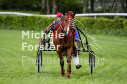 2019_05_05 Dielsdorf 032 - Michèle Forster Photography
