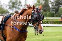 2019_05_05 Dielsdorf 034 - Michèle Forster Photography