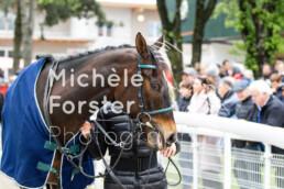 2019_05_05 Dielsdorf 048 - Michèle Forster Photography