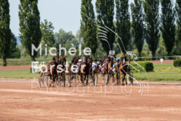 2019_07_13 Avenches 003 - Michèle Forster Photography