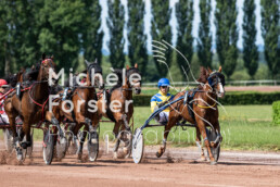 2019_07_13 Avenches 005 - Michèle Forster Photography