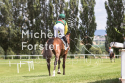 2019_07_13 Avenches 044 - Michèle Forster Photography