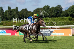 2019_08_08 Avenches 021 - Michèle Forster Photography