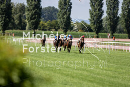 2019_08_08 Avenches 025 - Michèle Forster Photography