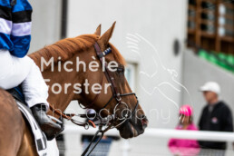 2019_08_12 Avenches 022 - Michèle Forster Photography