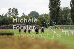 2019_09_02 Avenches 022 - Michèle Forster Photography