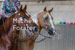 2019_09_15 Horsefarm 035 - Michèle Forster Photography