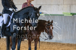 2019_09_15 Horsefarm 048 - Michèle Forster Photography