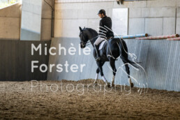 2019_09_15 Horsefarm 050 - Michèle Forster Photography