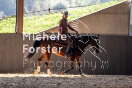 2019_09_15 Horsefarm 055 - Michèle Forster Photography