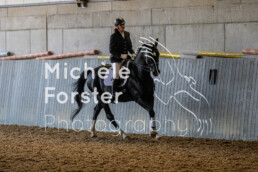 2019_09_15 Horsefarm 059 - Michèle Forster Photography