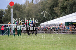 2019_10_06 Maienfeld 032 - Michèle Forster Photography