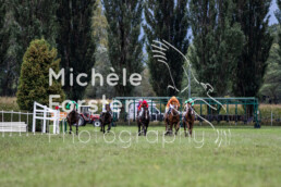2019_10_06 Maienfeld 056 - Michèle Forster Photography