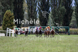 2019_10_06 Maienfeld 057 - Michèle Forster Photography