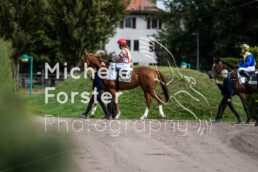 2019_10_07 Avenches 028 - Michèle Forster Photography