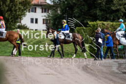 2019_10_07 Avenches 029 - Michèle Forster Photography
