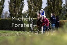 2019_10_07 Avenches 043 - Michèle Forster Photography