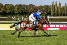2019_10_14 Avenches 047 - Michèle Forster Photography