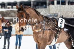 2020_02_02 St. Moritz 0003 - Michèle Forster Photography