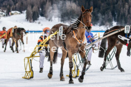 2020_02_02 St. Moritz 0091 - Michèle Forster Photography