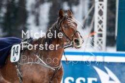 2020_02_02 St. Moritz 0103 - Michèle Forster Photography