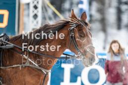 2020_02_02 St. Moritz 0105 - Michèle Forster Photography