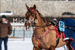 2020_02_09 St. Moritz 0022 - Michèle Forster Photography