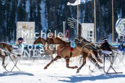 2020_02_09 St. Moritz 0092 - Michèle Forster Photography