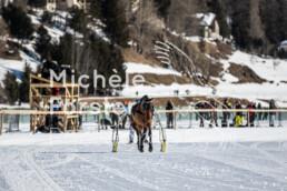 2020_02_09 St. Moritz 0093 - Michèle Forster Photography