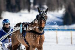2020_02_09 St. Moritz 0095 - Michèle Forster Photography
