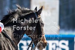 2020_02_09 St. Moritz 1364 - Michèle Forster Photography