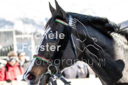 2020_02_09 St. Moritz 1384 - Michèle Forster Photography