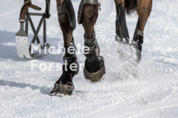 2020_02_16 St. Moritz 0009 - Michèle Forster Photography