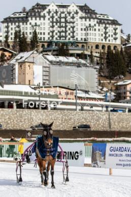 2020_02_16 St. Moritz 0027 - Michèle Forster Photography