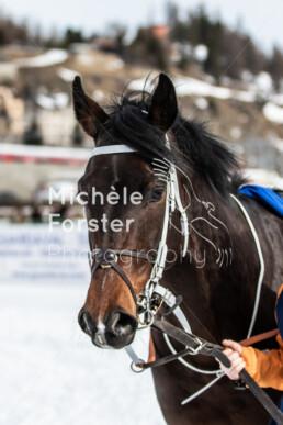 2020_02_16 St. Moritz 0161 - Michèle Forster Photography