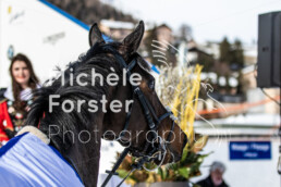 2020_02_16 St. Moritz 1560 - Michèle Forster Photography