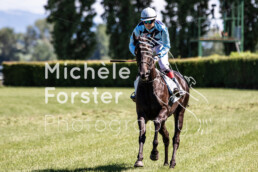 2020_07_05_Avenches_MForsterPhotography_0089 - Michèle Forster Photography